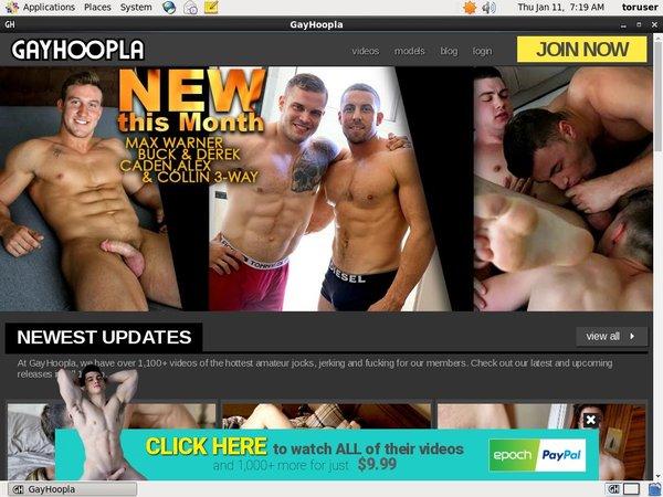 Gay Hoopla Pw